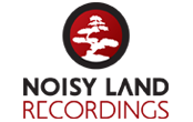 Noisy Land
