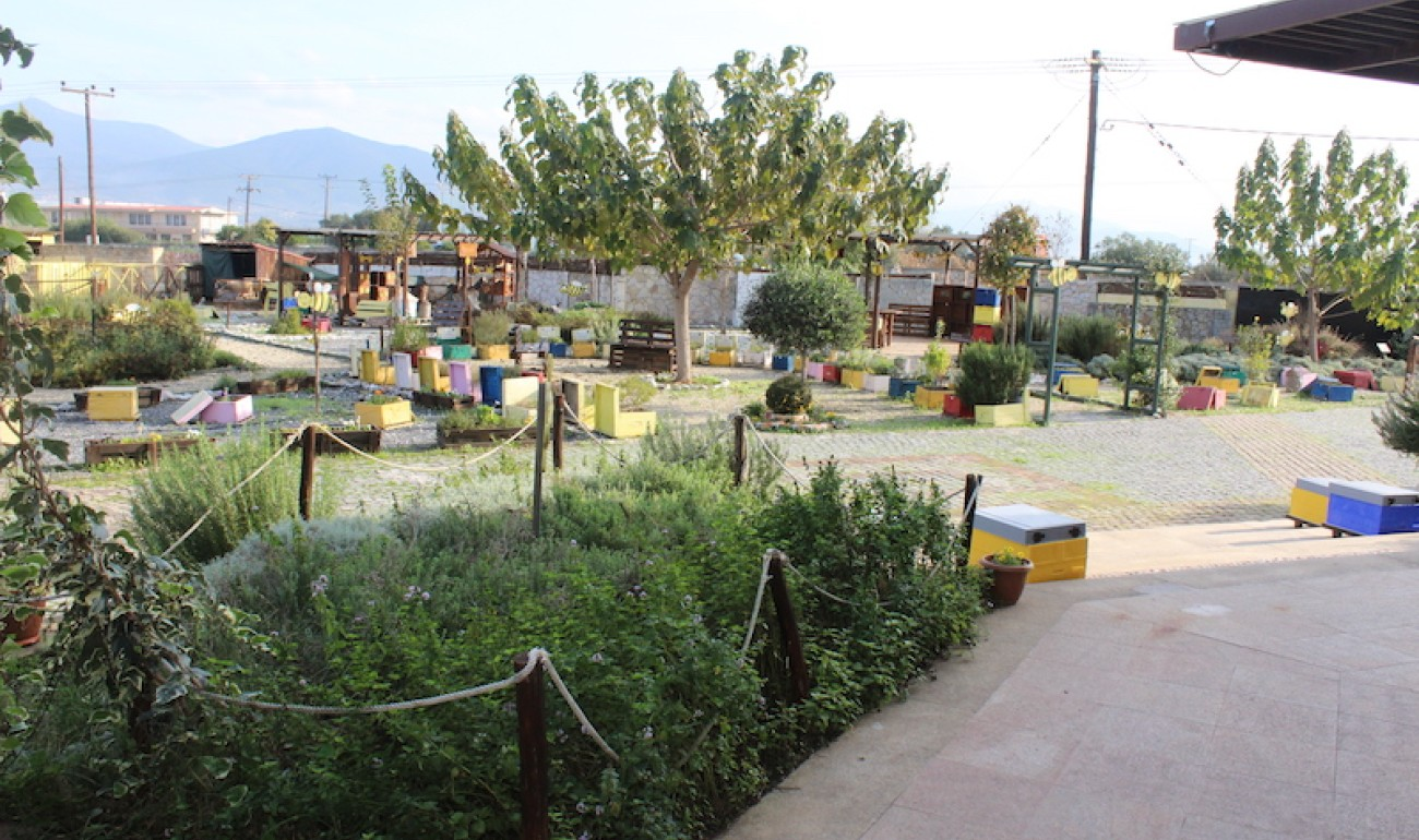 Επίσκεψη σπουδαστών Μελισσοκομίας στο ANEL Honey Park