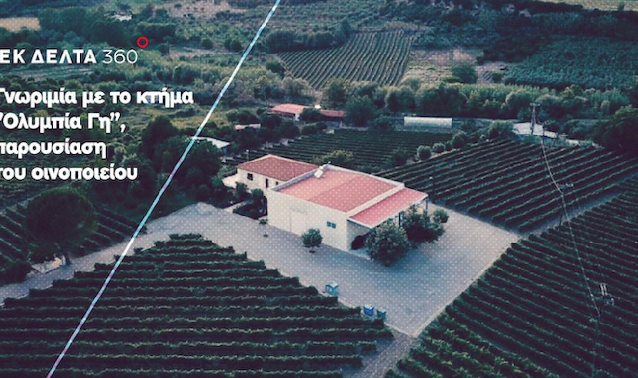 """Το ΙΕΚ ΔΕΛΤΑ 360 γνωρίζει το Κτήμα """"Ολυμπία Γη"""" και μαθαίνει τα μυστικά του Οινοποιείου"""