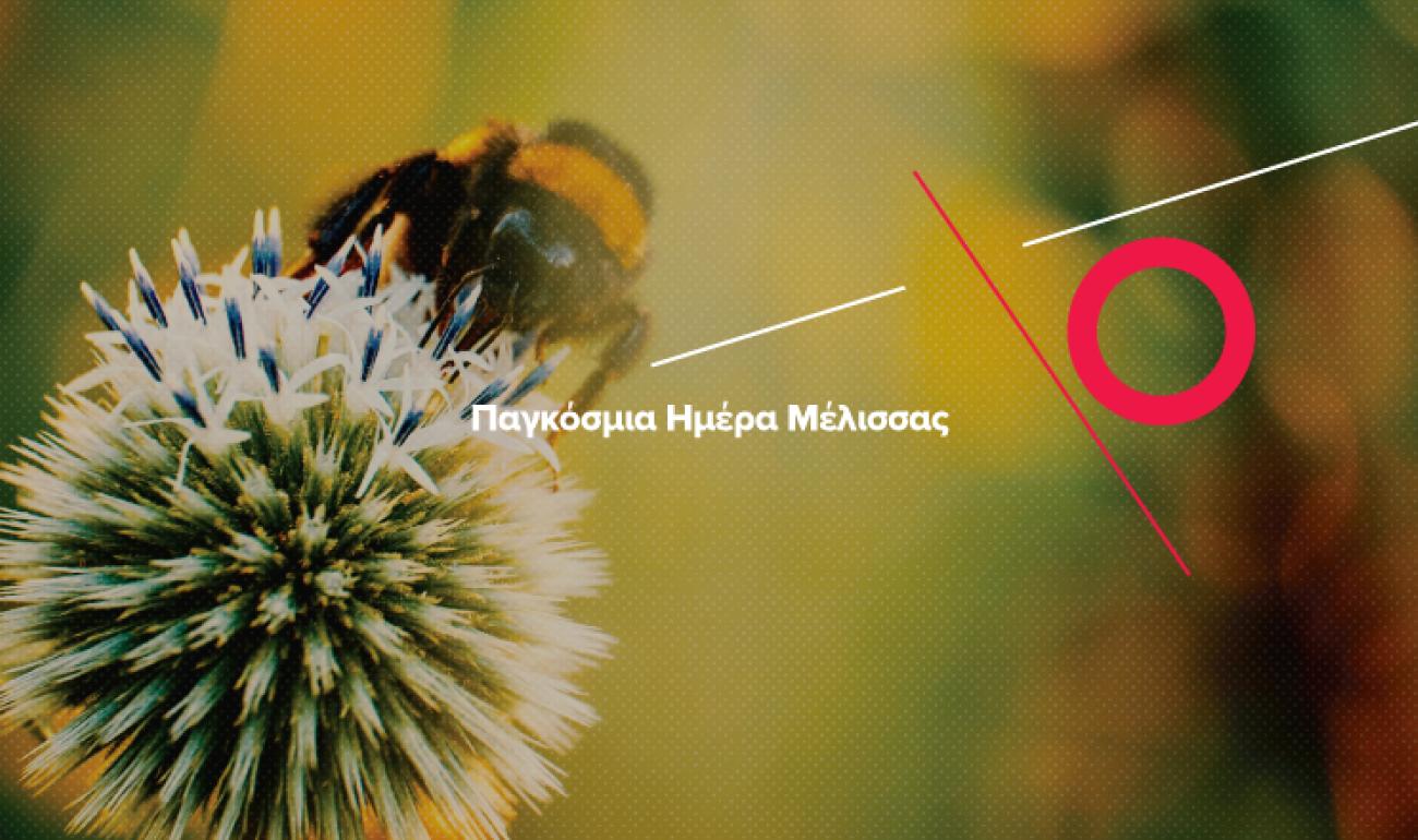 20/5: Παγκόσμια Ημέρα Μέλισσας – Ραγδαία ανάπτυξη στο επάγγελμα του Μελισσοκόμου!